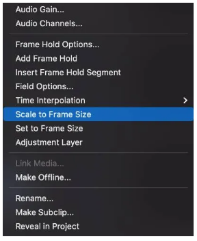 Resize in Premiere using Scale to Frame size